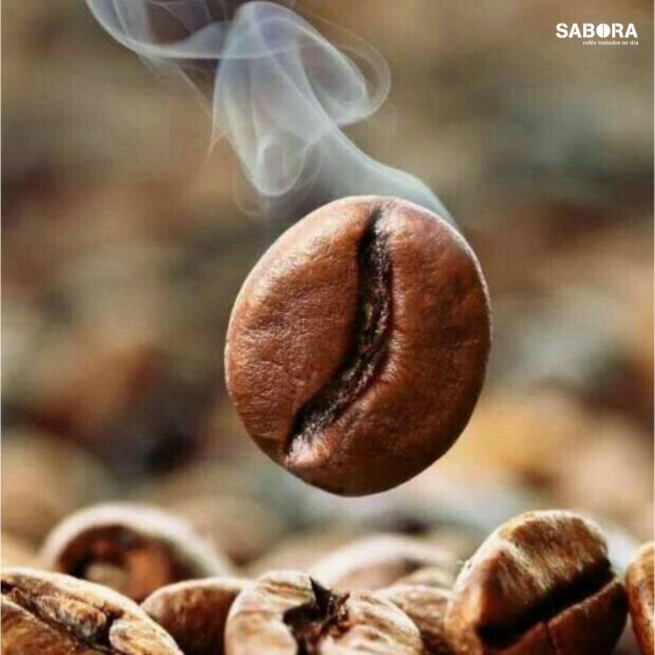 Gran de café torrado