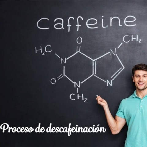 Proceso de eliminación de la cafeína utilizando sólo agua