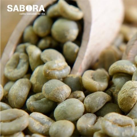 Granos de cafés ecológicos